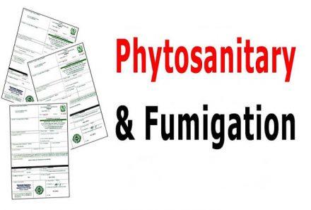 Khái niệm giấy phép Fumigation và Phytosanitary là gì